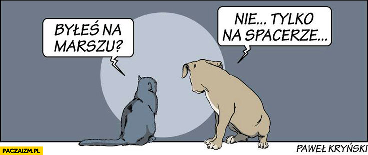 Byłeś na marszu? Nie tylko na spacerze pies kot Kryński