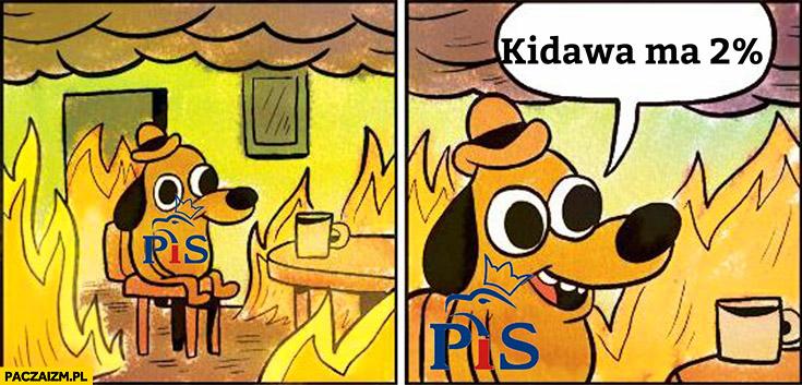 Cała Polska płonie typowy wyborca PiS cieszy się, że Kidawa ma 2% procent poparcia