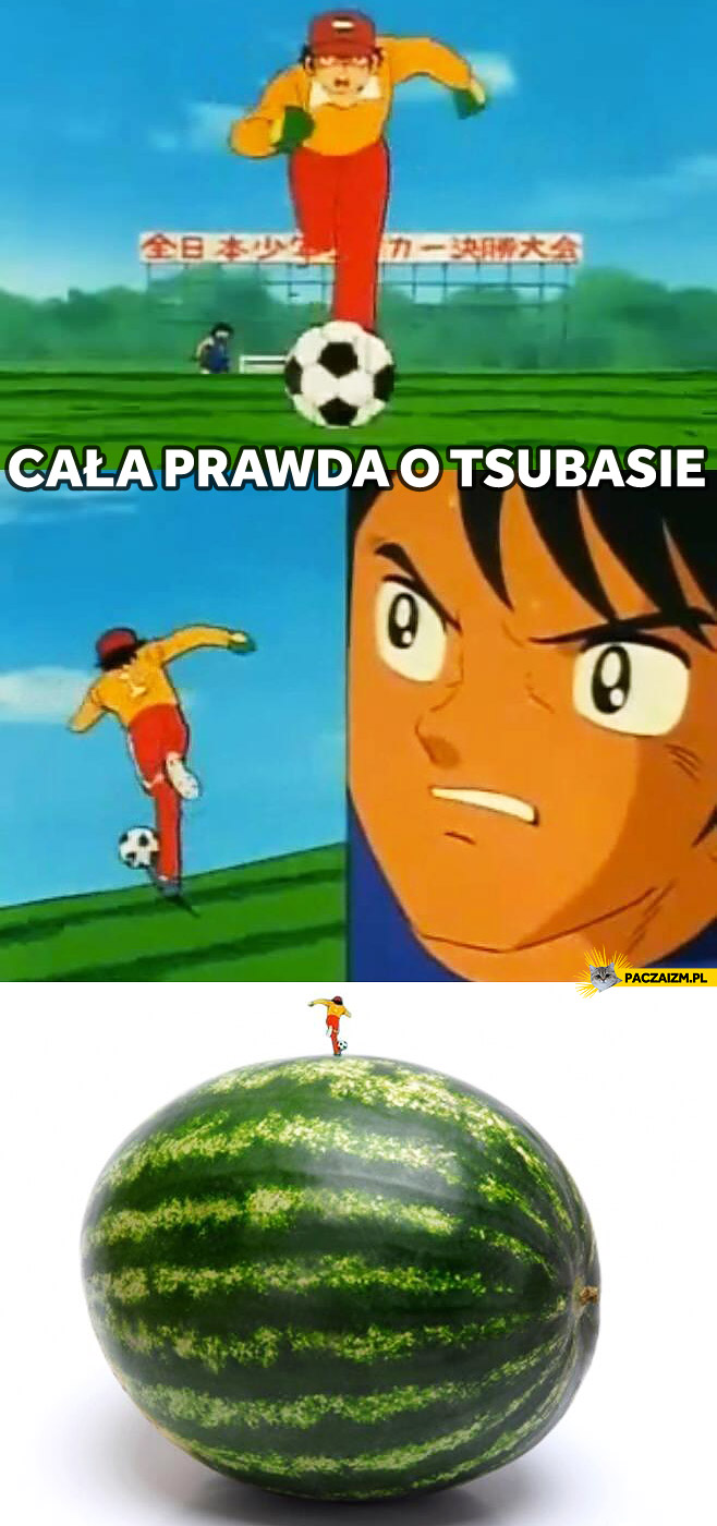 Cała prawda o Tsubasie