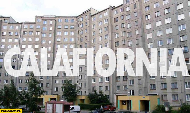 Calafiornia Kalafiornia blokowisko