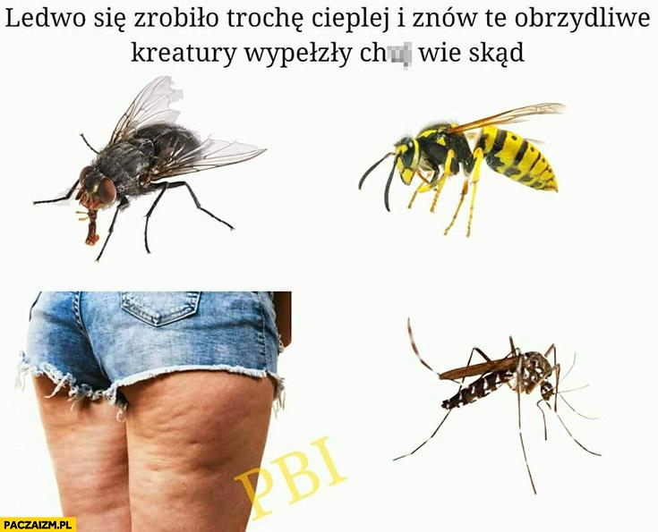 Cellulit ledwo zrobiło się trochę cieplej i znów te obrzydliwe kreatury wypełzły nie wiadomo skąd komary muchy osy