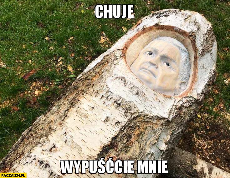 Chamy wypuśćcie mnie Lech Kaczyński wyrzeźbiony w brzozie