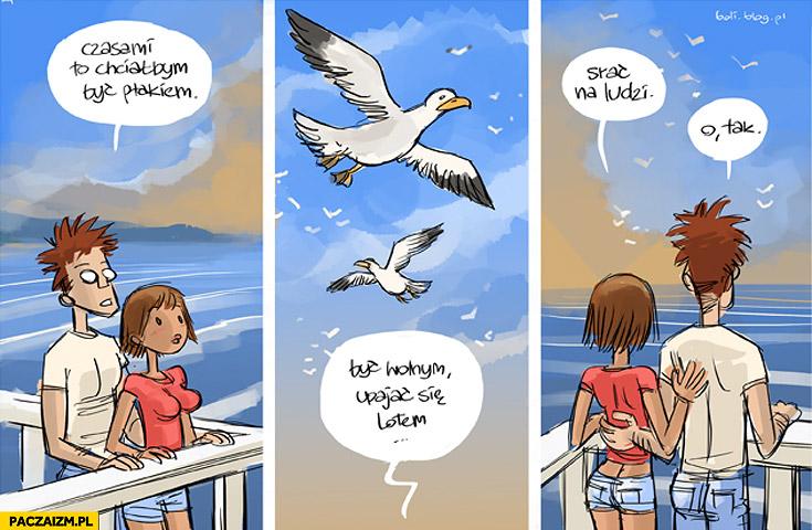 Chciałbym być ptakiem być wolnym upajać się lotem srać na ludzi