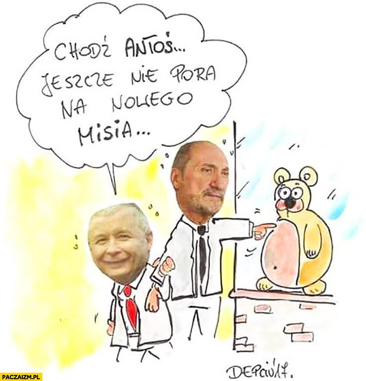 Chodź Antoś, jeszcze nie pora na nowego Misia Kaczyński Macierewicz