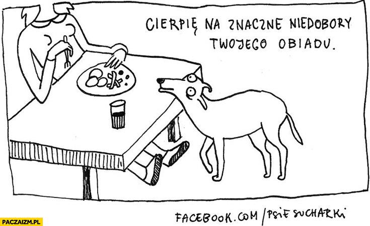 Cierpię na znaczne niedobory Twojego obiadu pies