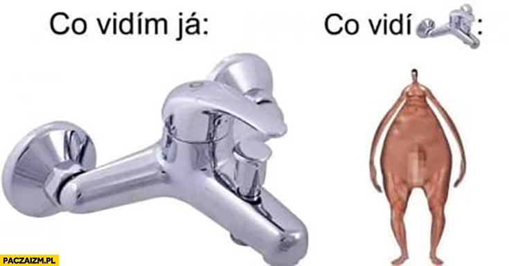 Co ja widzę: kran, co widzi kran: Czeskie Słowackie memy