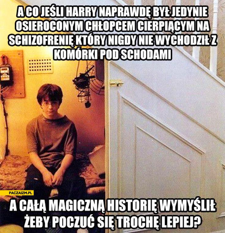 Co jeśli Harry Potter wymyślił całą magiczną historię żeby poczuć się lepiej