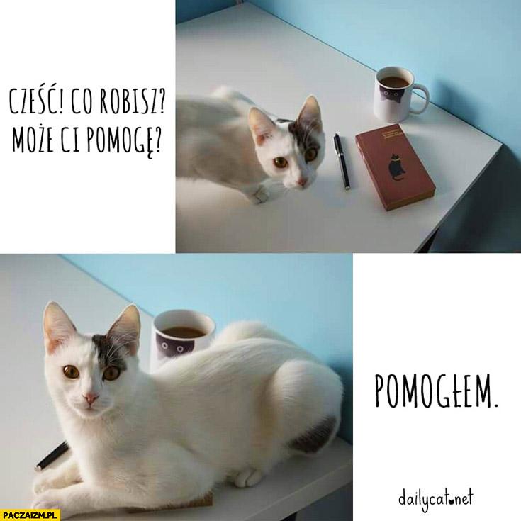 Co robisz może Ci pomogę? Pomogłem. kot usiadł na książce