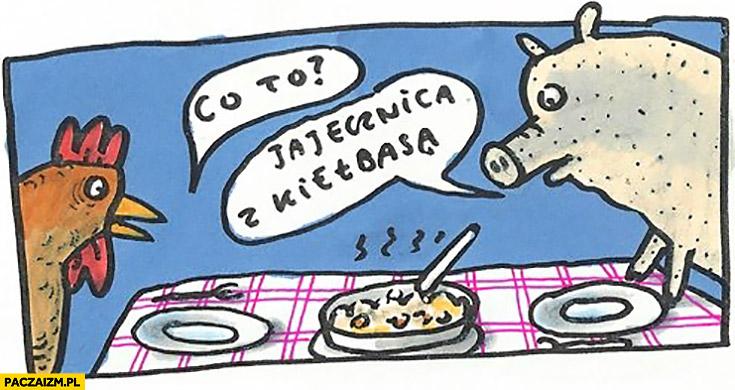 Co to? Jajecznica z kiełbasą kogut kurczak i świnia prosiak jedzą