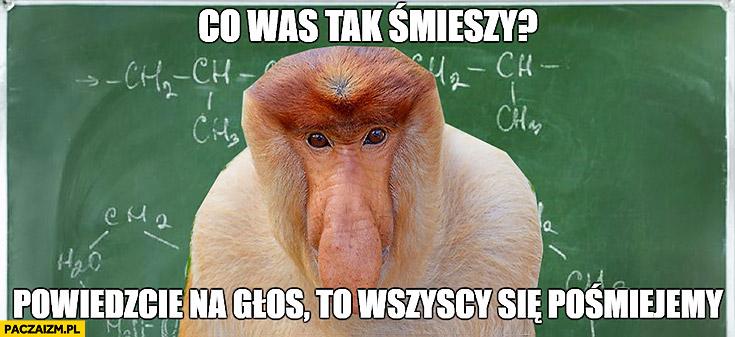 Co was tak śmieszy? Powiedzcie na głos, to wszyscy się pośmiejemy typowy Polak nosacz małpa nauczyciel