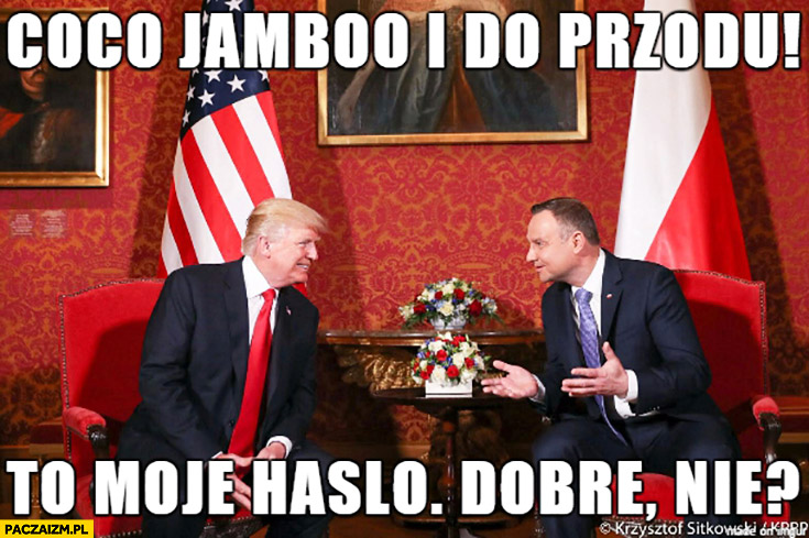 Coco jambo i do przodu to moje hasło, dobre nie? Andrzej Duda Donald Trump