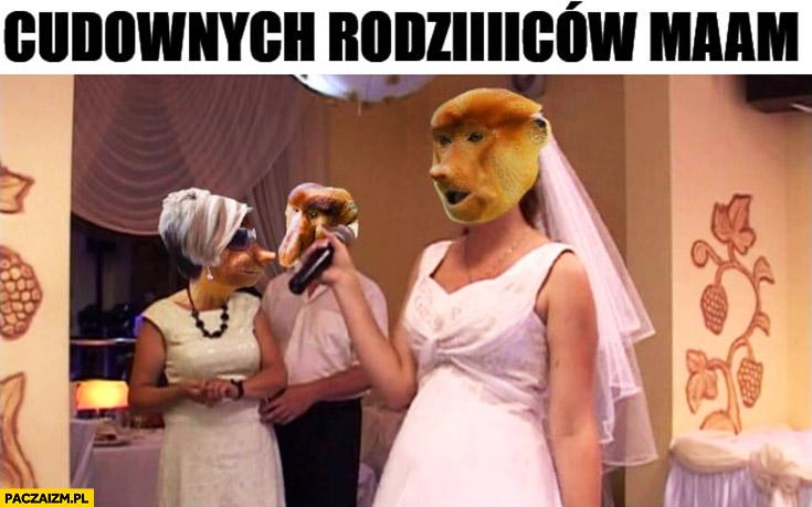 Cudownych rodziców mam przemowa na ślubie weselu typowy Polak nosacz małpa