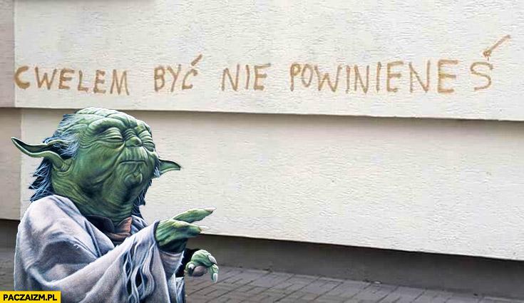 Cwelem być nie powinieneś napis na murze mistrz Yoda