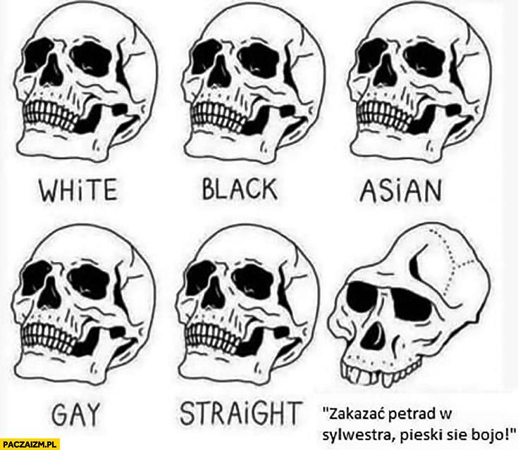 Czaszka zakazać petard w sylwestra pieski się boja biały, czarny, azjata czaszki