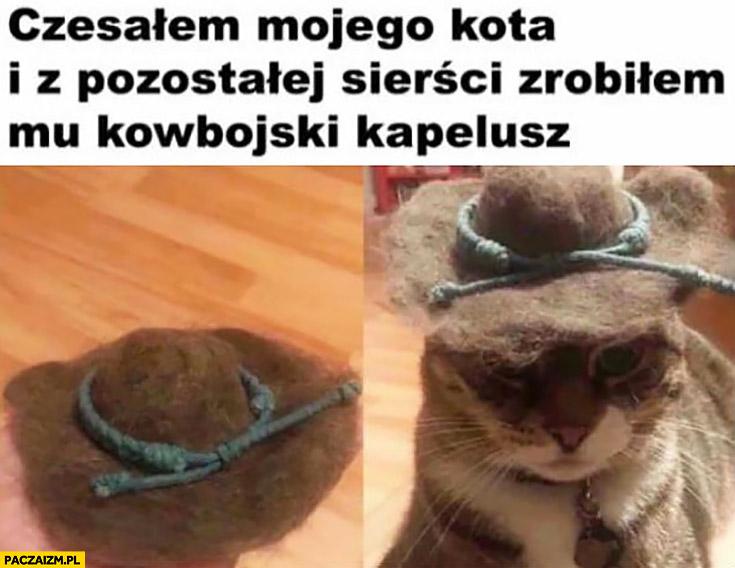 Czesałem mojego kota i z pozostałej sierści zrobiłem mu kowbojski kapelusz