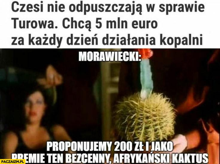 Czesi nie odpuszczają w sprawie Turowa chcą 5 mln euro za każdy dzień działania kopalni, Morawiecki: proponujemy 200 zł i jako premię ten bezcenny afrykański kaktus