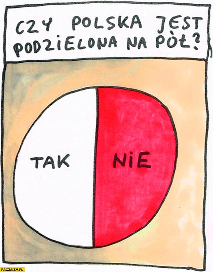 Czy Polska jest podzielona na pół? Tak nie wykres