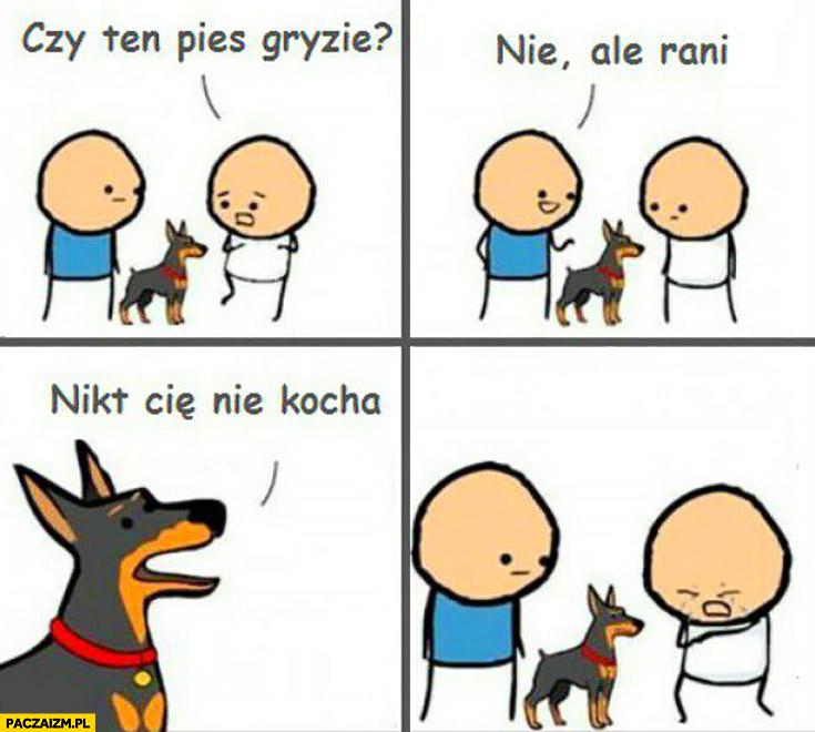 Czy ten pies gryzie? Nie ale rani. Nikt Cię nie kocha. komiks