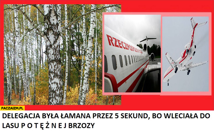 Delegacja była łamana przez 5 sekund bo wleciała do lasu potężnej brzozy Smoleńsk Tupolew