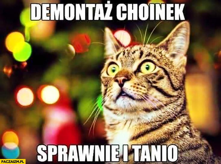 Demontaż choinek sprawnie i tanio kot