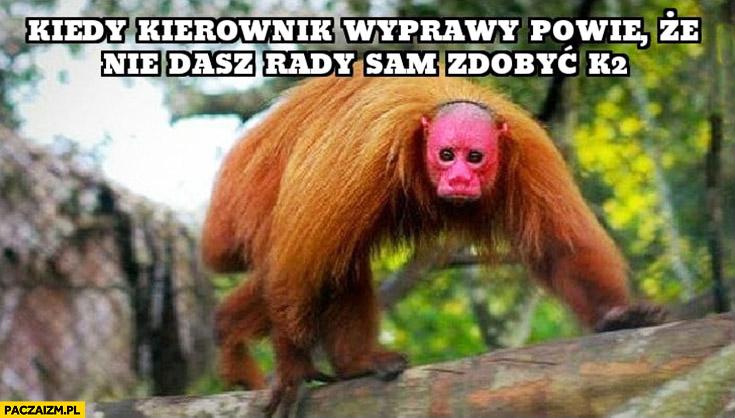 Denis Urubko kiedy kierownik wyprawy powie, że nie dasz rady sam zdobyć K2 małpa Ukrainiec
