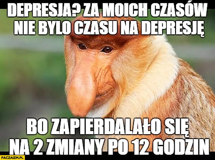 Depresja za moich czasów nie było czasu na depresję, bo zapierdzielało się na 2 zmiany po 12 godzin typowy Polak nosacz małpa