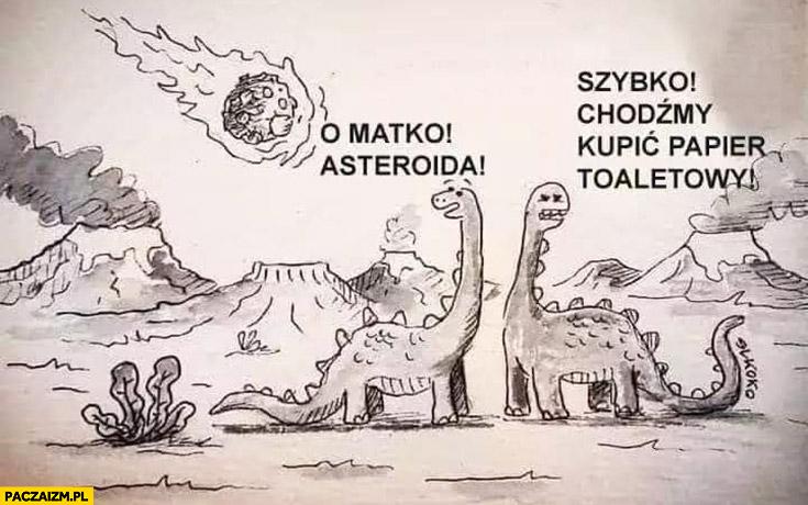 Dinozaury o matko asteroida szybko chodźmy kupić papier toaletowy