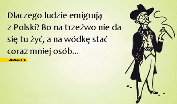 Dlaczego ludzie emigrują z Polski bo na trzeźwo nie da się tu żyć a na wódkę stać coraz mniej osób