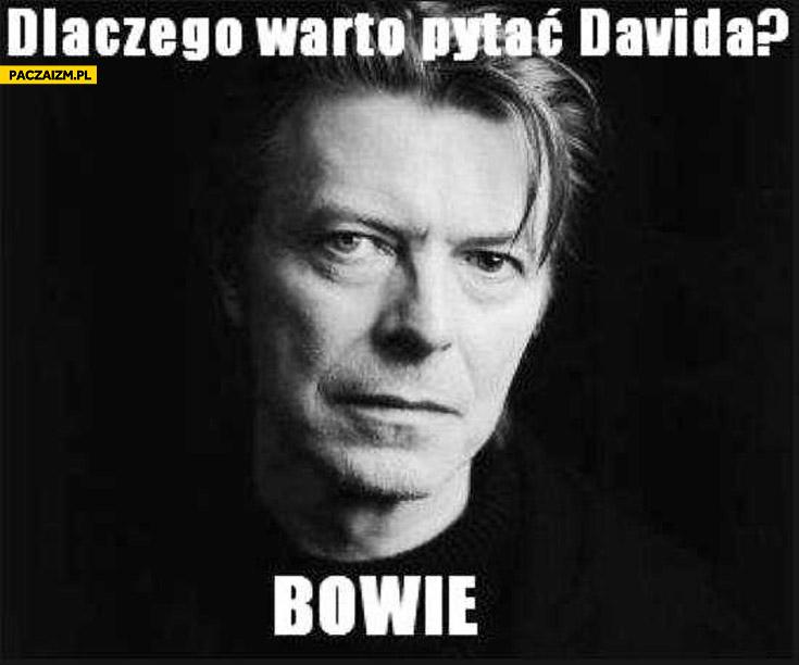 Dlaczego warto pytać Davida Bowie bo wie