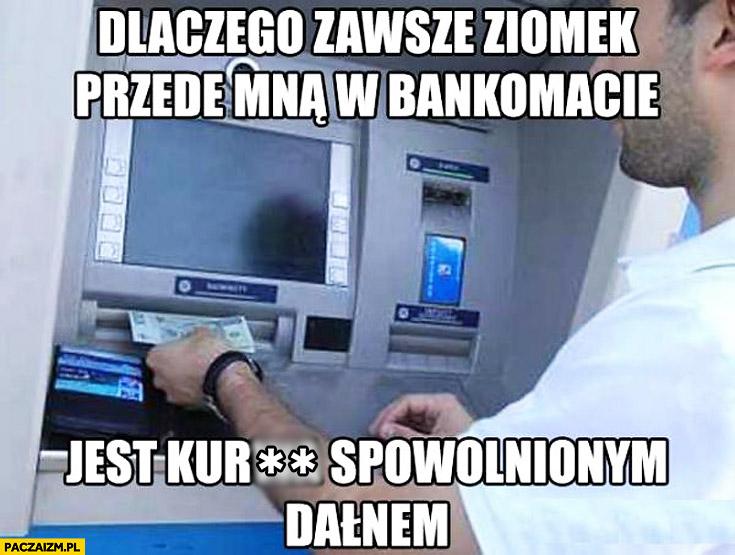 Dlaczego zawsze ziomek przede mną w bankomacie jest spowolnionym dałnem?