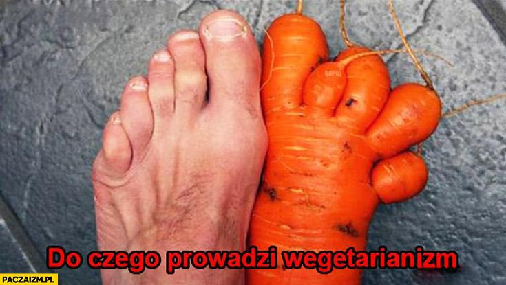 Do czego prowadzi weganizm noga marchewka
