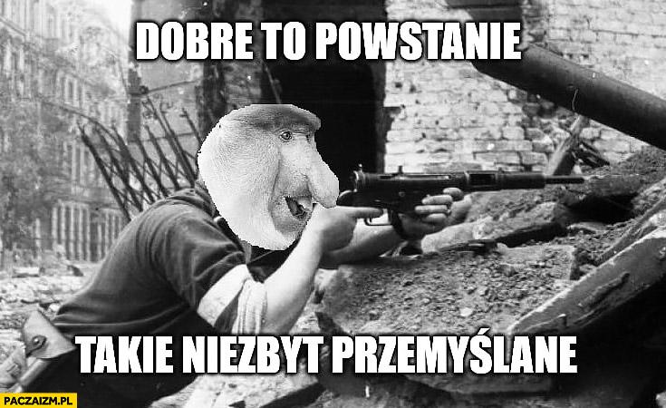 Dobre to powstanie warszawskie, takie niezbyt przemyślane typowy Polak nosacz małpa