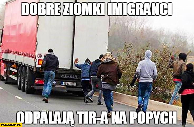 Dobre ziomki imigrancki odpalają TIR-a na popych