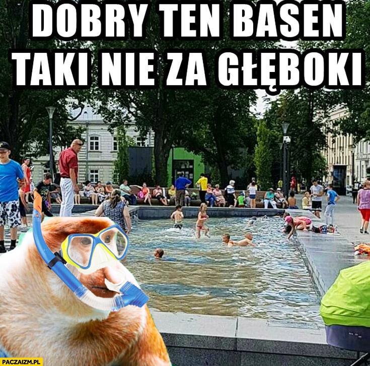 Dobry ten basen, taki nie za głęboki kąpie się w fontannie typowy Polak nosacz małpa