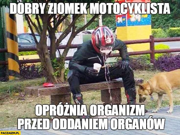Dobry ziomek motocyklista opróżnia organizm przed oddaniem organów