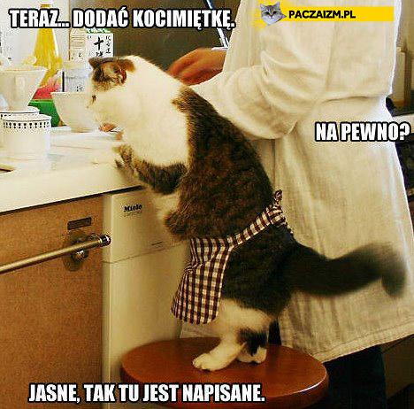 Kocie gotowanie