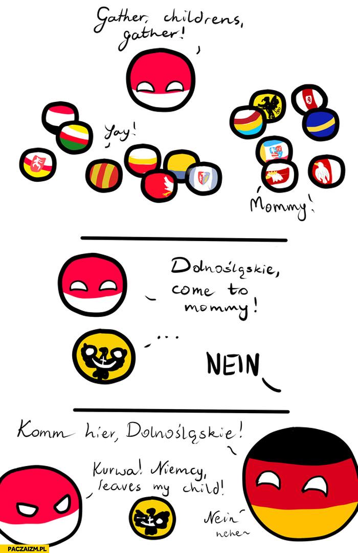 Dolnaśląskie Niemcy Polandball