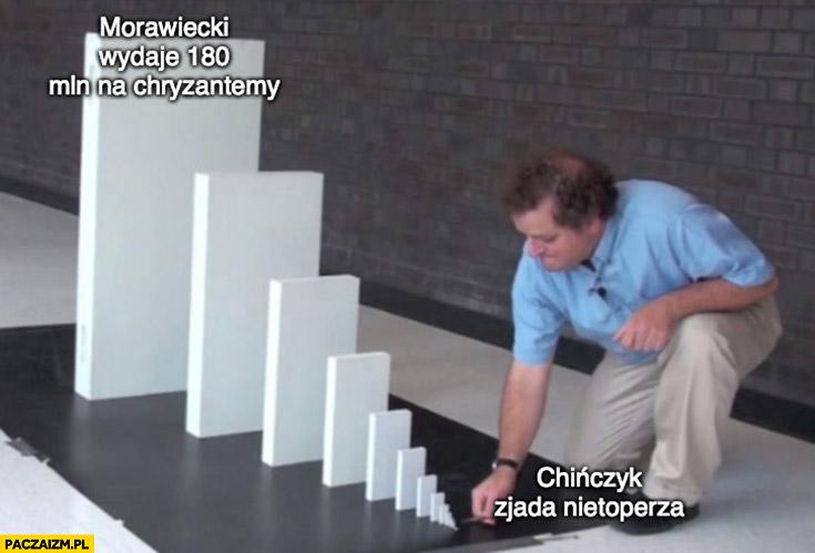 Domino Chińczyk zjada nietoperza Morawiecki wydaje 180 milionów na chryzantemy