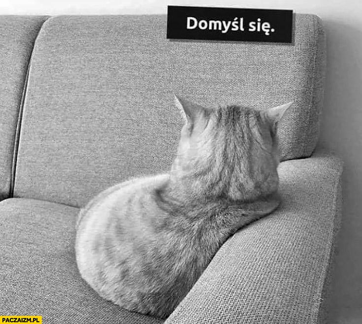 Domyśl się obrażony odwrócony kot z fochem