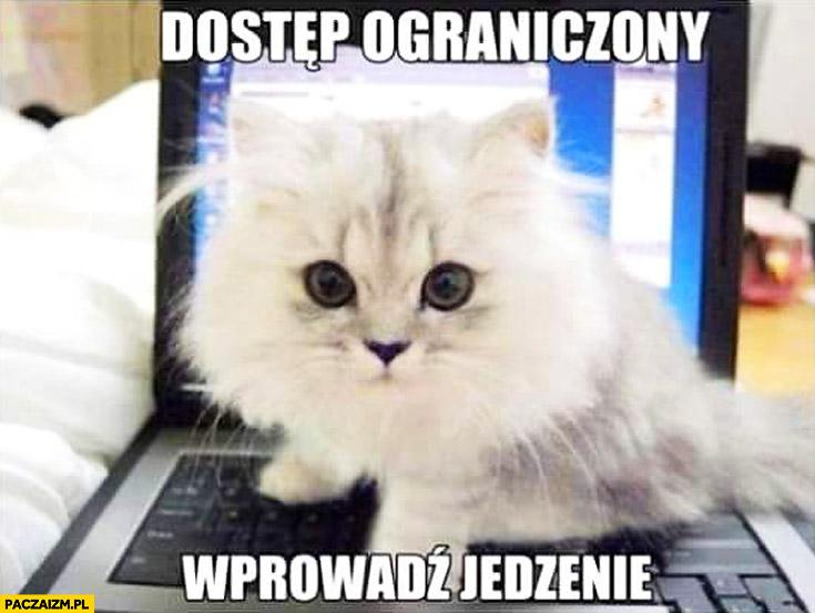 Dostęp ograniczony wprowadź jedzenie kotek na laptopie