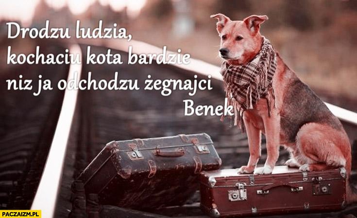 Drodzu ludzia kochaciu kota bardzie niż ja odchodzu żegnajci Benek pies spakowane walizki