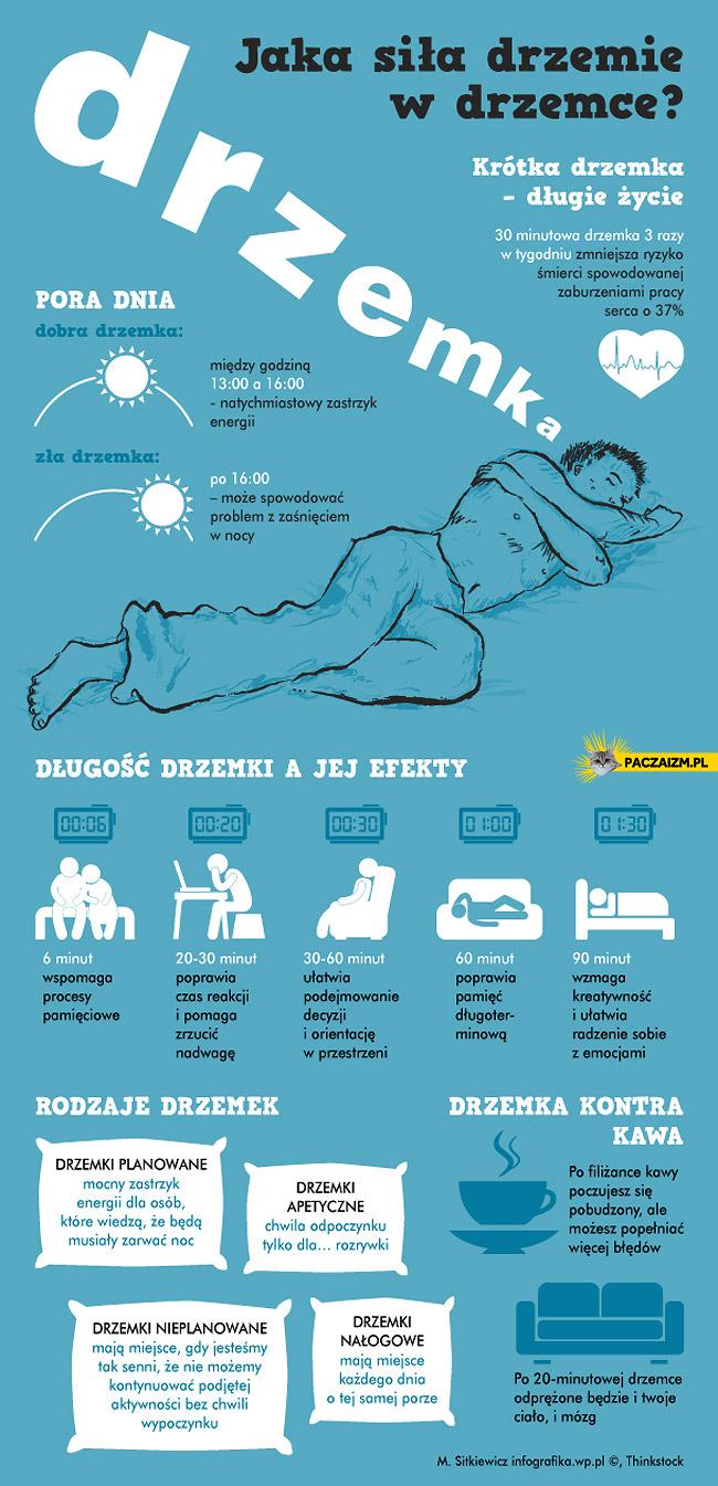 Drzemka infografika