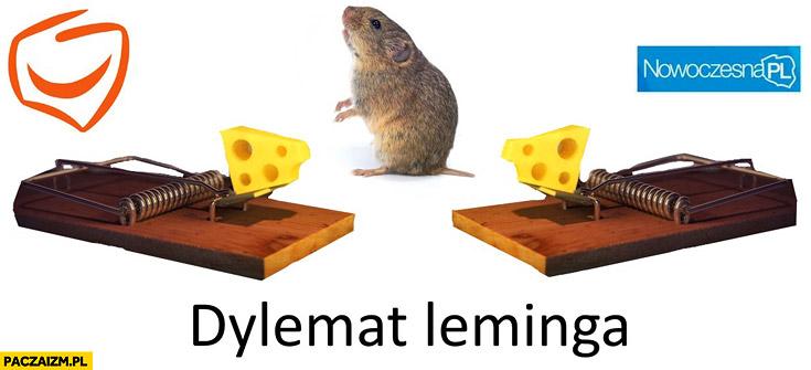 Dylemat leminga pułapka na myszy szczury Platforma Obywatelska Nowoczesna PL