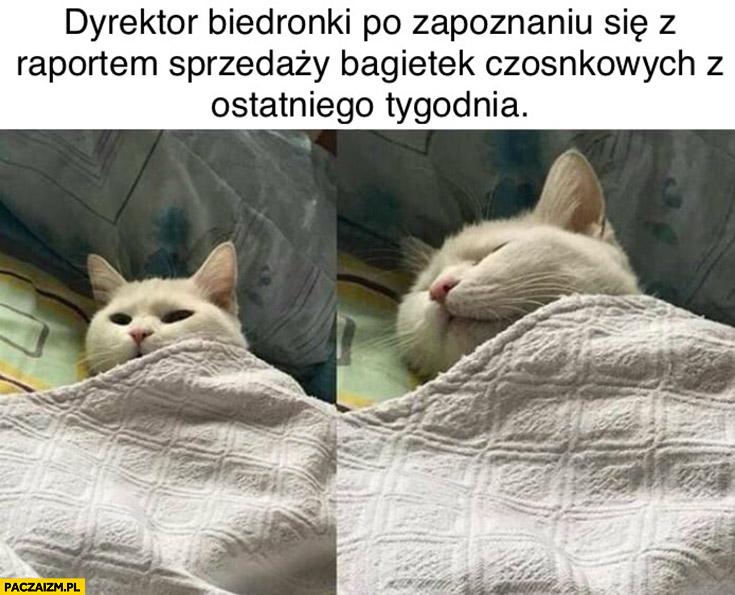 Dyrektor Biedronki po zapoznaniu się z raportem sprzedażny bagietek czosnkowych z ostatniego tygodnia kot śpi
