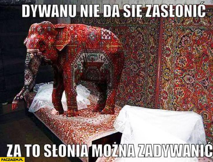 Dywanu nie da się zasłonić za to słonia można zadywanić