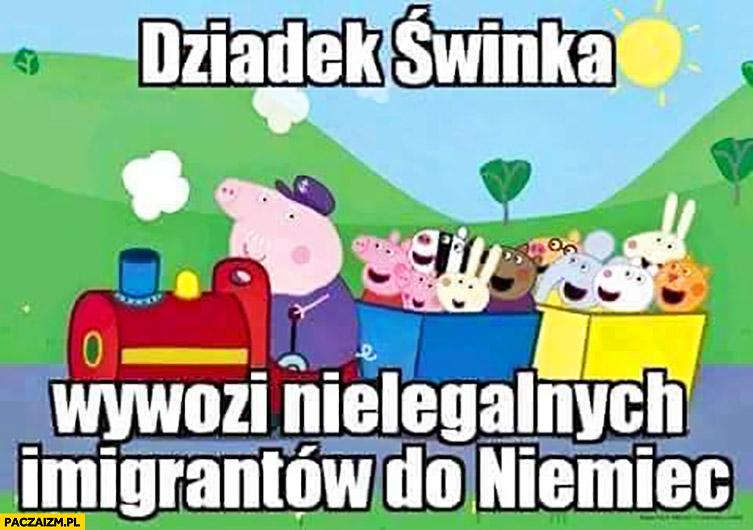 Dziadek świnka wywozi nielegalnych imigrantów do Niemiec bajka Świnka Peppa