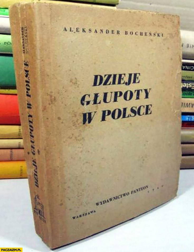 Dzieje głupoty w Polsce książka