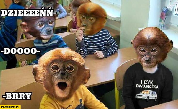 Dzień-do-bry uczniowie w klasie typowy Polak nosacz małpa