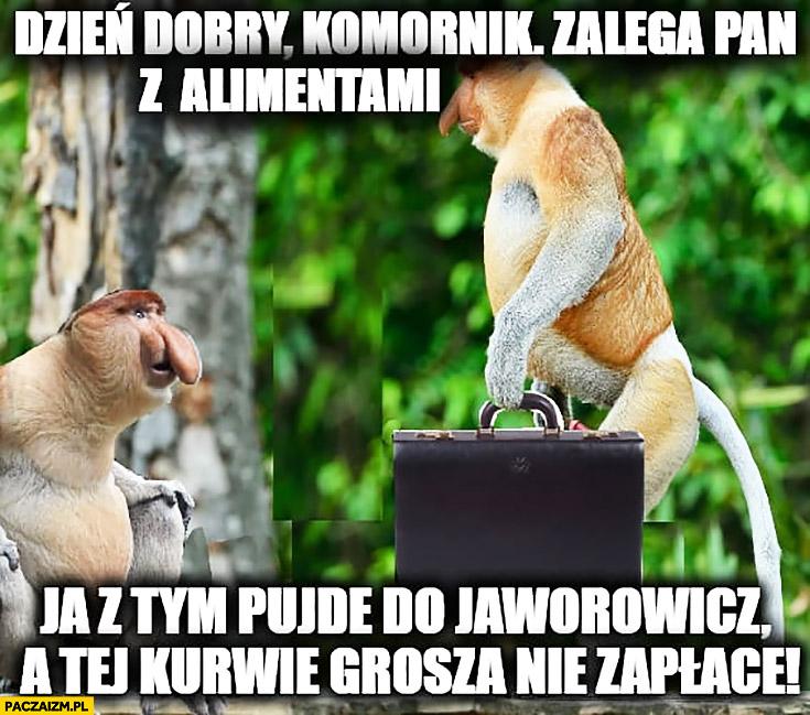 Dzień dobry, komornik zalega Pan z alimentami, ja z tym pójdę do Jaworowicz a jej grosza nie zapłacę typowy Polak nosacz małpa