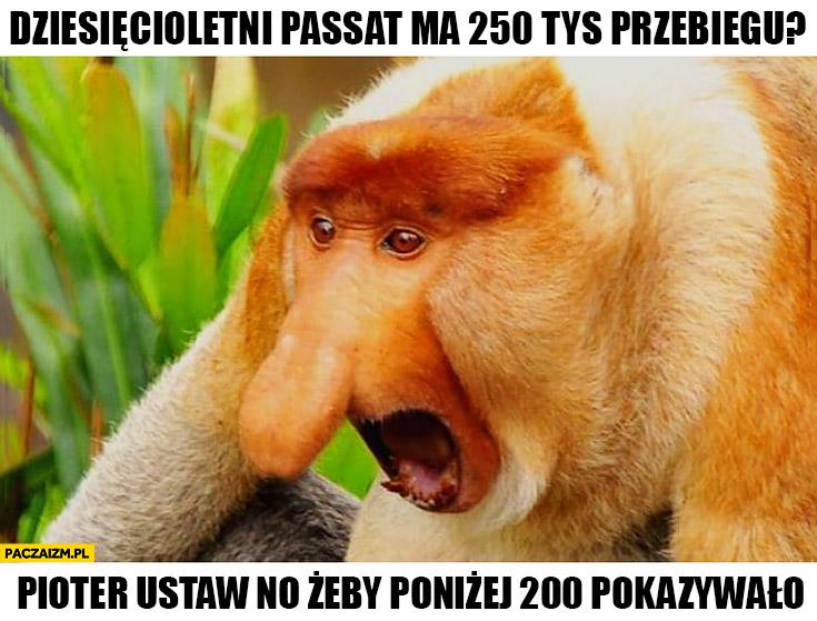 Dziesięcioletni Passat ma 250 tys przebiegu, Pioter ustaw no żeby poniżej 200 pokazywało typowy Polak nosacz małpa